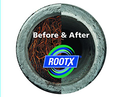 rootx_image